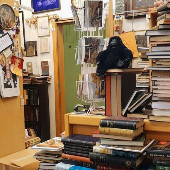 Bókin: la libreria più magica di Reykjavík